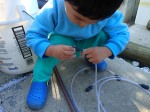 Junior fish doctor fitting an airstone to the airline.