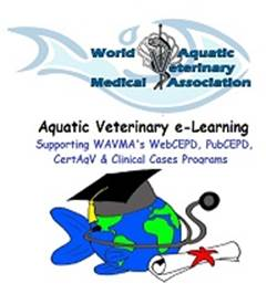 Free Webinar: Water Quality 101 for the Practicing Fish Doctors. (1/3)